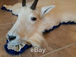 Stunning Mountain Goat Rug, Professional Quality Taxidermy New